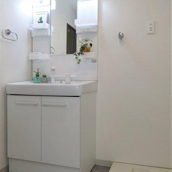 シャワーヘッド付きの洗面台。
