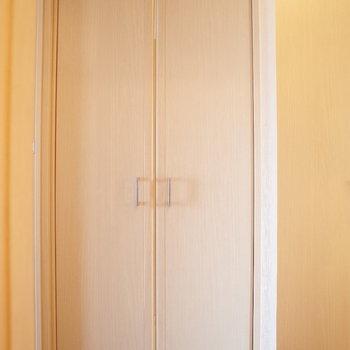 ここはなんの収納かな・・※写真は6階の同間取り別部屋のものです