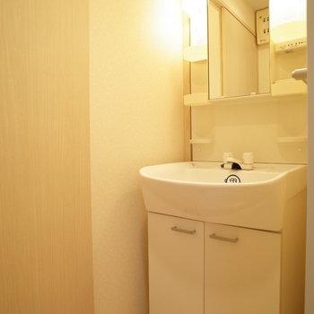 やった独立洗面台!※写真は6階の同間取り別部屋のものです