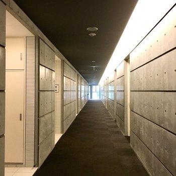 共用廊下、とてもきれい。