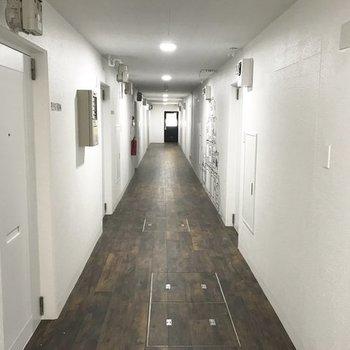 廊下もいい感じね。※写真は前回募集時のものです