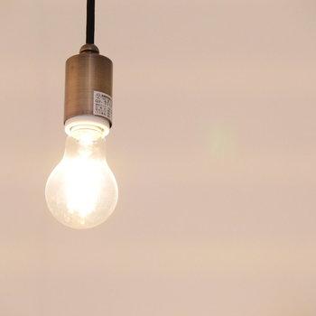 吊るされたライトで暖かく照らして。※写真は前回募集時のものです