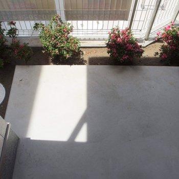 お部屋にはテラスがありました。※写真は1階の反転間取り別部屋です。
