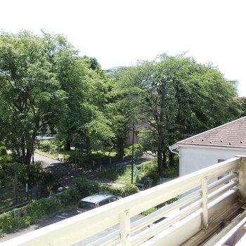 ロフトから木々とベンチを眺める