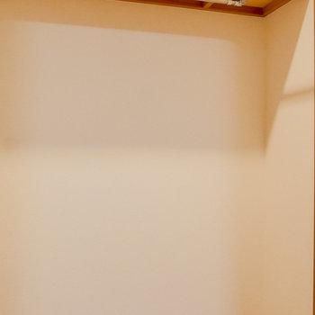 【洋室】収納はウォークインクローゼット!