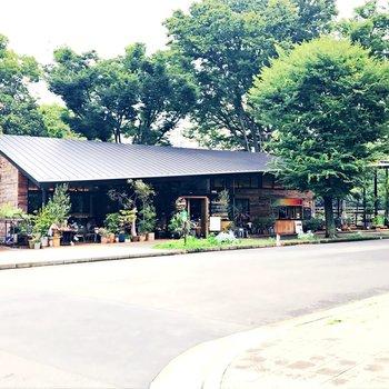 近くにあった公園に開かれたカフェ