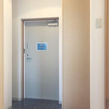 玄関の横には大きそうなシューズボックスが