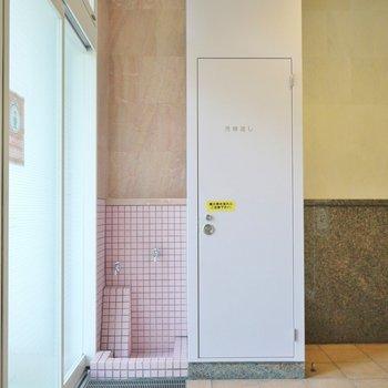 ワンちゃんの足洗い場。※写真は別室です。