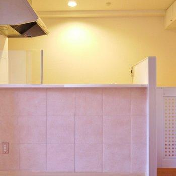 キッチン横には、ワンちゃんが入ってこないように仕切りが♪※写真は別室です。