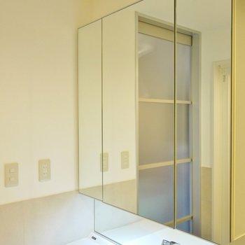 大きな鏡の裏は、モノいれ。※写真は別室です。