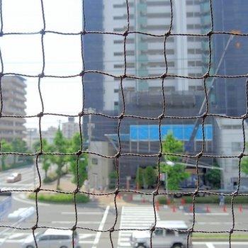 鳩よけの網が・・※写真は3階の同タイプ