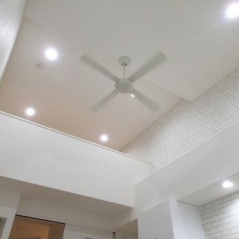 【別部屋】でも天井はたか~い!あれ、ロフトへのはしごがない。