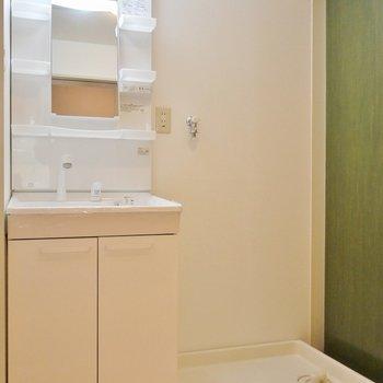 ゆったりサイズの洗面所。※写真は同タイプの別室