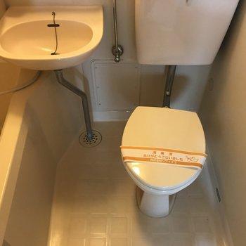 トイレはここです
