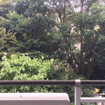 眺望は緑!緑!緑! ※同階同間取り別部屋の写真です