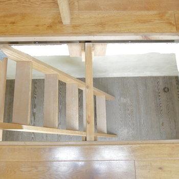 お部屋②の地下スペースへ。こちらはしっかり梯子です。