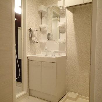 水回りはこんな感じ、脱衣所に洗濯機があるので便利!※写真は別部屋反転間取りのものです。