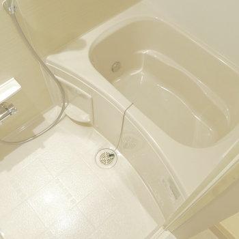 ひとりなら十分な浴室。