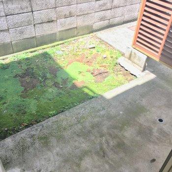 お庭はゆったり。洗濯機置場もコチラです