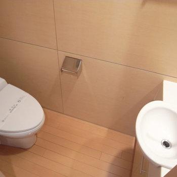 トイレはなぜか鏡&手洗い。自分の顔を見ながら・・写真は別部屋同間取りです