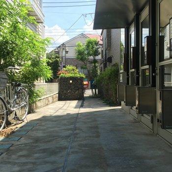道路から玄関までの道のりは緑があるし清潔感よし!