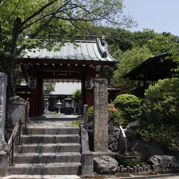 近くには大倉山公園や神社が。休日にはふらーっと来たい
