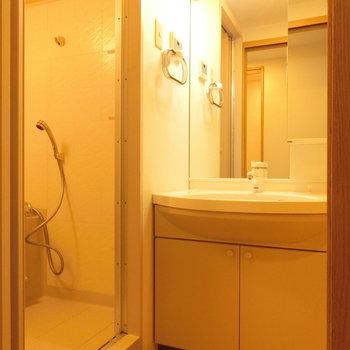 明るい洗面台。余裕のある雰囲気