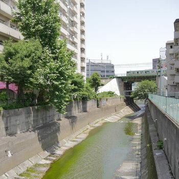 目の前、神田川が流れています。