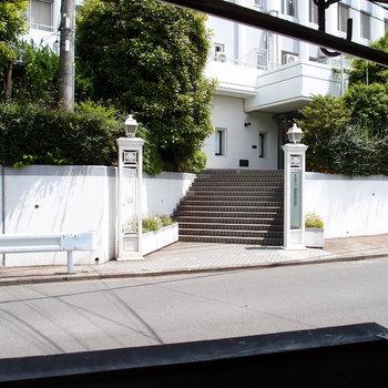 眺望。1階なので目の前には通りと大学のキャンパス