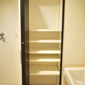 隣には収納スペース。タオルや下着などを入れても◎(※写真は6階の同間取り別部屋のものです)