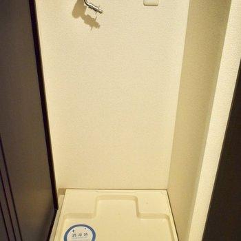 洗濯機は脱衣所内に。(※写真は6階の同間取り別部屋のものです)