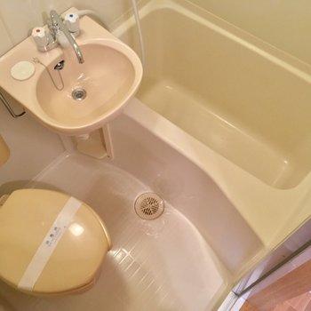 シャワーカーテンは何色にする??