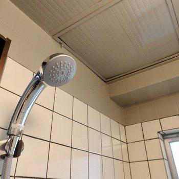 シャワーのみです。