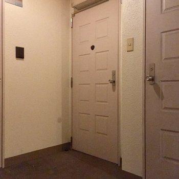 最後に共用部。廊下はシンプルですが・・・
