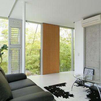 竹と青空の Gallery