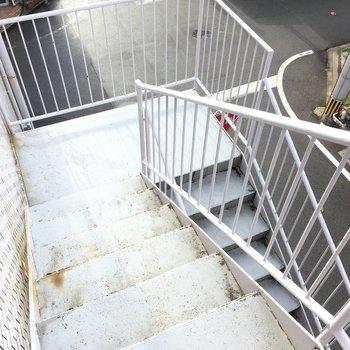 共用階段を降りていくと・・・。