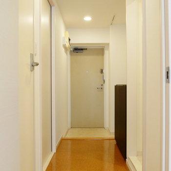 リビングから玄関を。奥のドアを開くと納戸です。