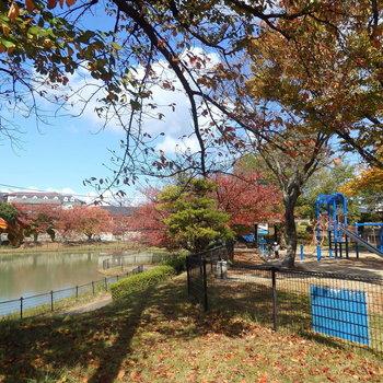 池のある公園も近くに