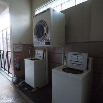 共有スペースには洗濯機&乾燥機がありました。