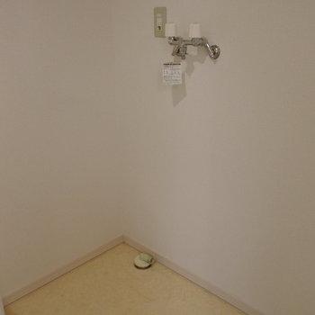 洗濯機もゆったりサイズ※写真は同間取り別部屋です