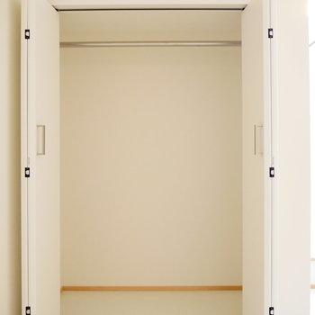 一人なら十分な収納。 ※同階反転間取り別部屋の写真です