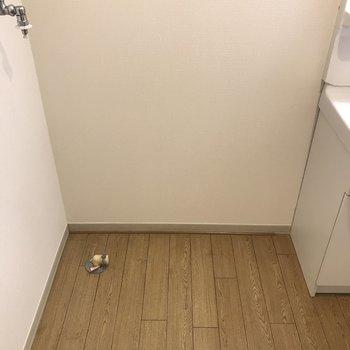 洗濯機置場は洗面台横になります。