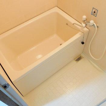 浴室にはちゃんと浸かれますね。