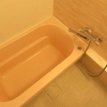 お風呂もかなり大きめです!