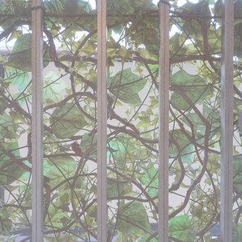 キッチンの小窓からの眺め。なにやらグリーンが…