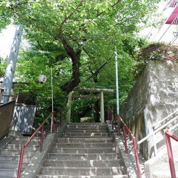 神社の階段上がってお部屋です!
