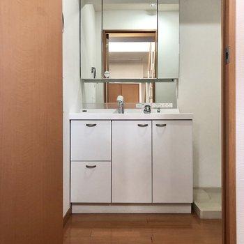 大きな鏡が付いた独立洗面台。