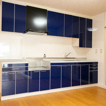 このお部屋はキッチンがすごいんだ。