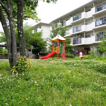 ちょっとした遊び場も敷地内にあります