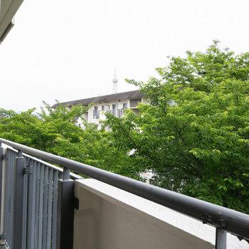 眺望は緑モサモサ。